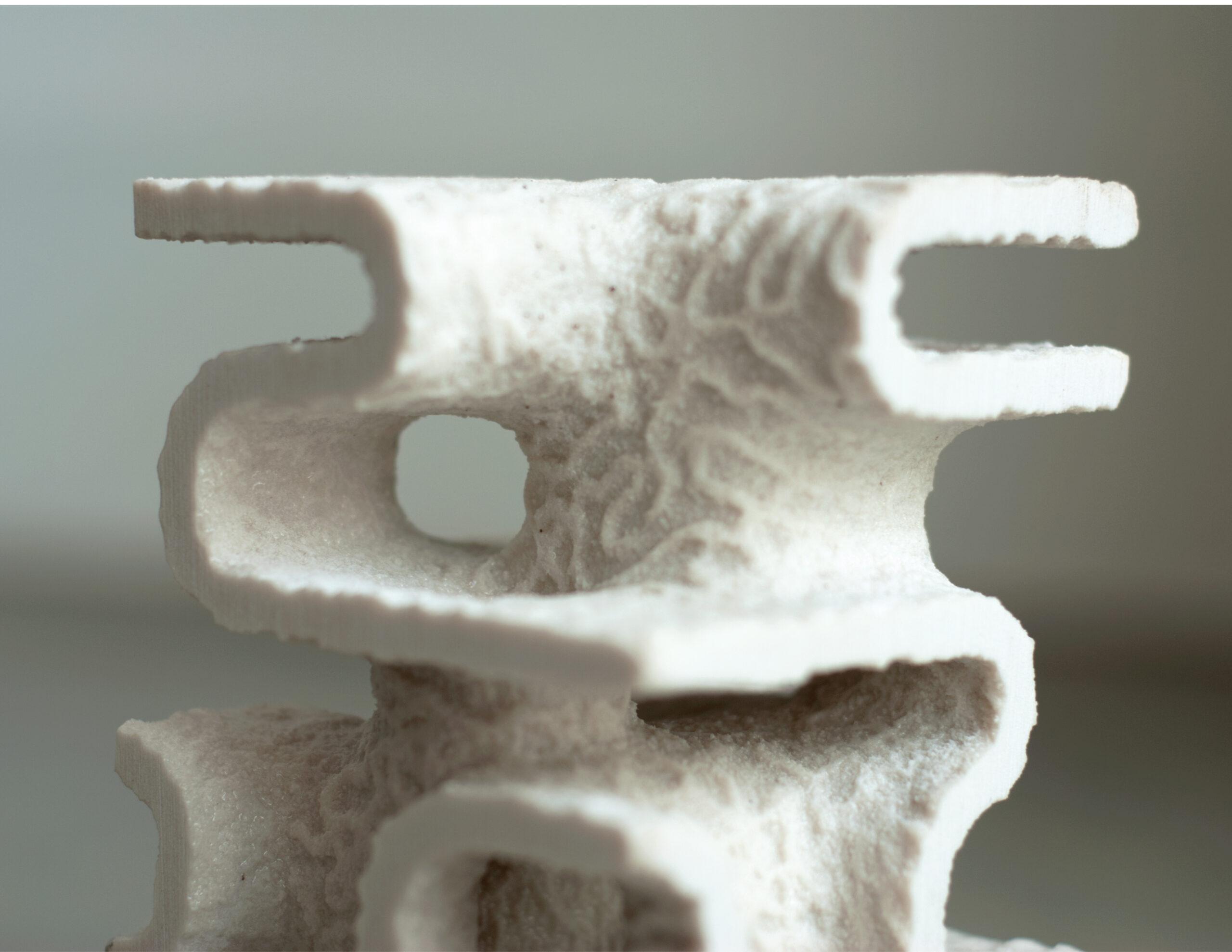 Kopia Ead Schofield Project02 Image2